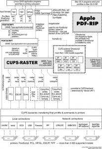 cups_overview